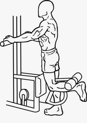 Illustration of the Standing Leg Curl exercise