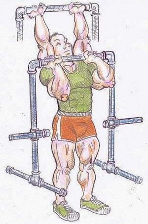 Depiction of the overhead press exercise using a Harvey Maxime Apparatus